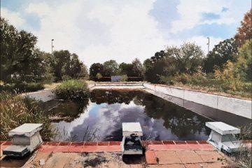 Abandoned Pool Parys